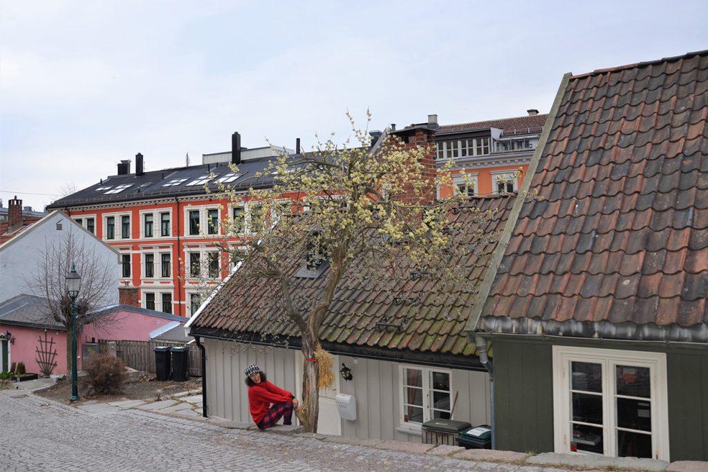 Oslo, città verde europea 2019